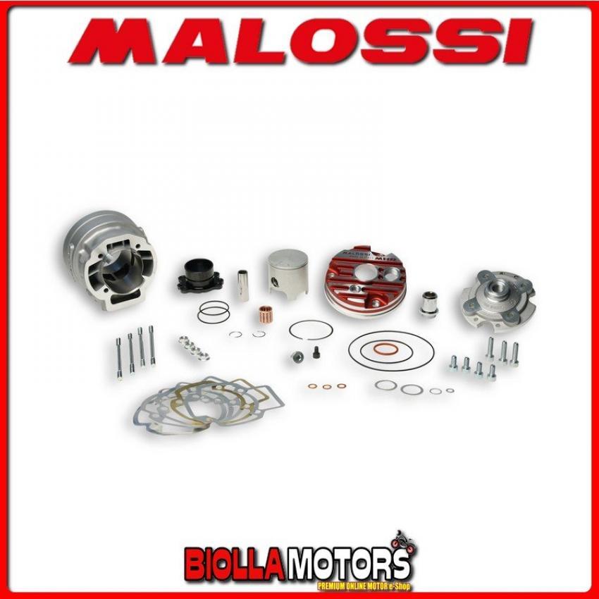 APRILIA Rally 50 LC Tipo:TM Variatore MALOSSI Overrange