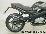53607HF SILENZIATORE GIANNELLI IN CARBONIO X PLANET 125 99/03 / RAPTOR 125 04
