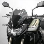 8010335 KIT CUPOLINO Fume' Scuro KAWASAKI Z750 R 2012 COMPLETO
